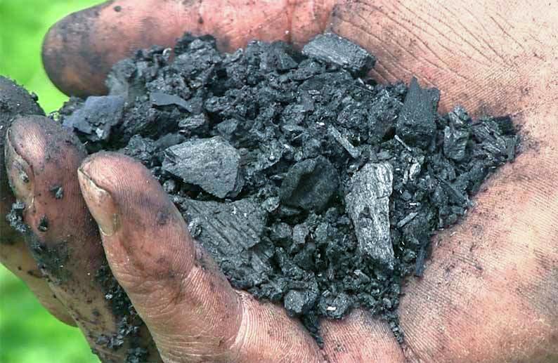 άνθρακα άνθρακα